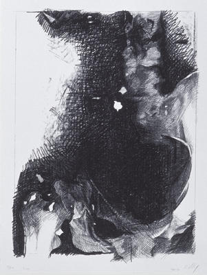 X-ray, from the series Violence to Non-violence, Prints from the Peace Project