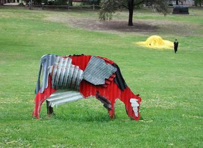 Cow (Black and Red)
